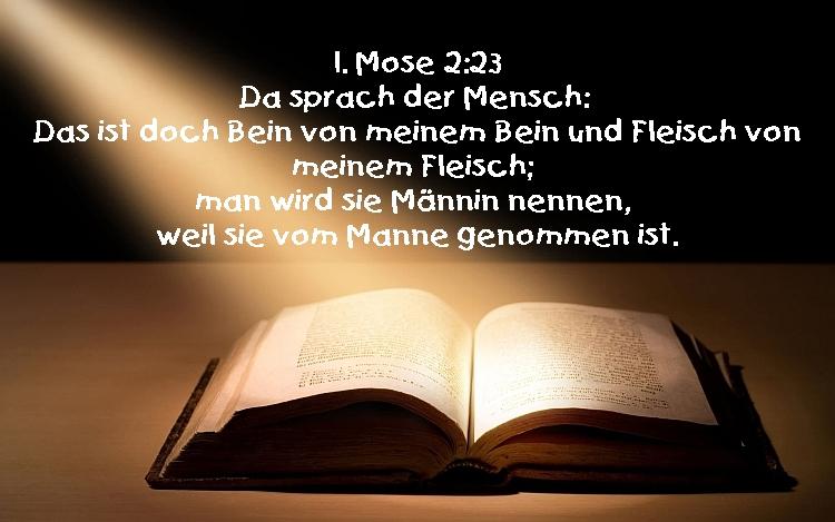 würde in der bibel